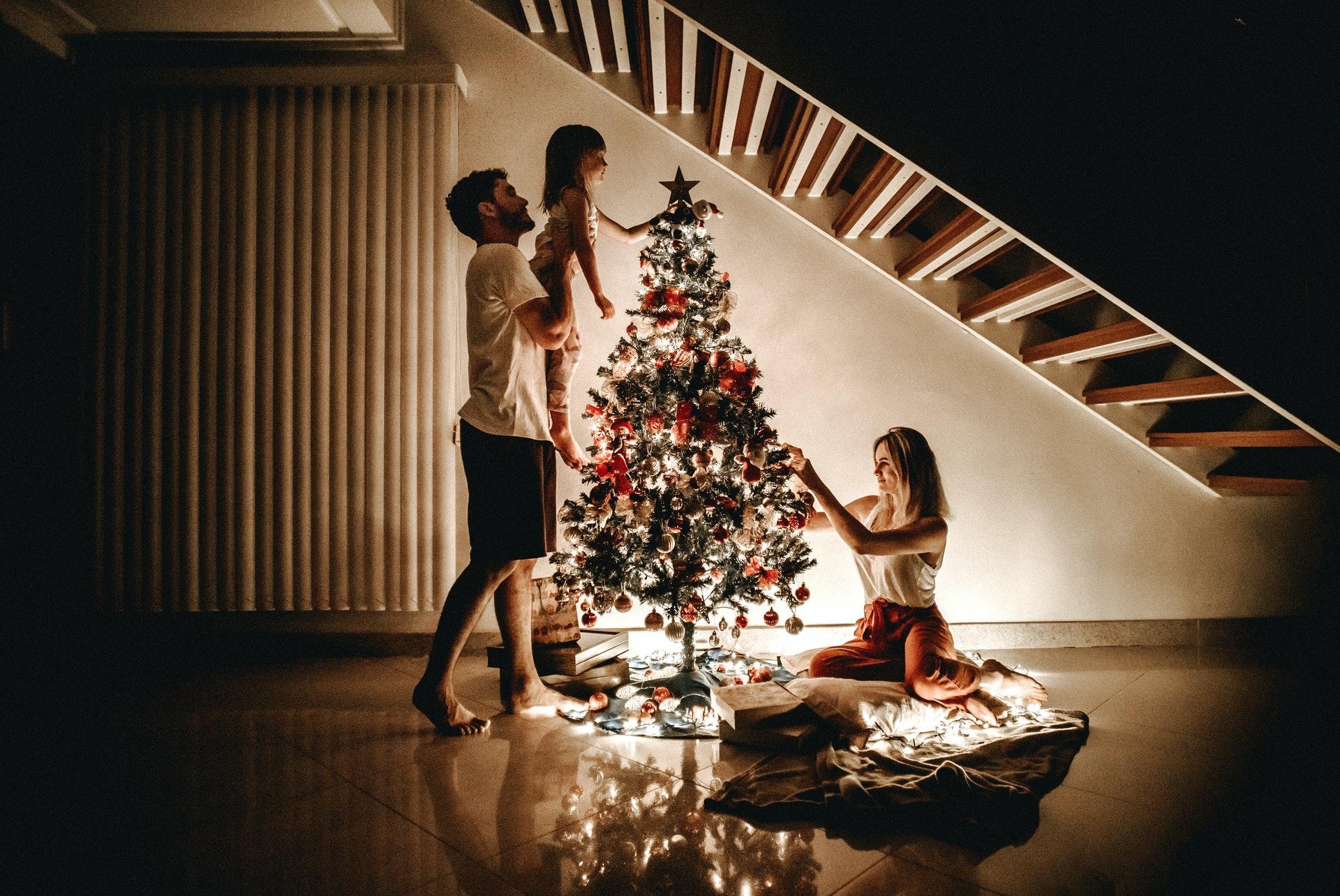 enjoy a Christmas adventure