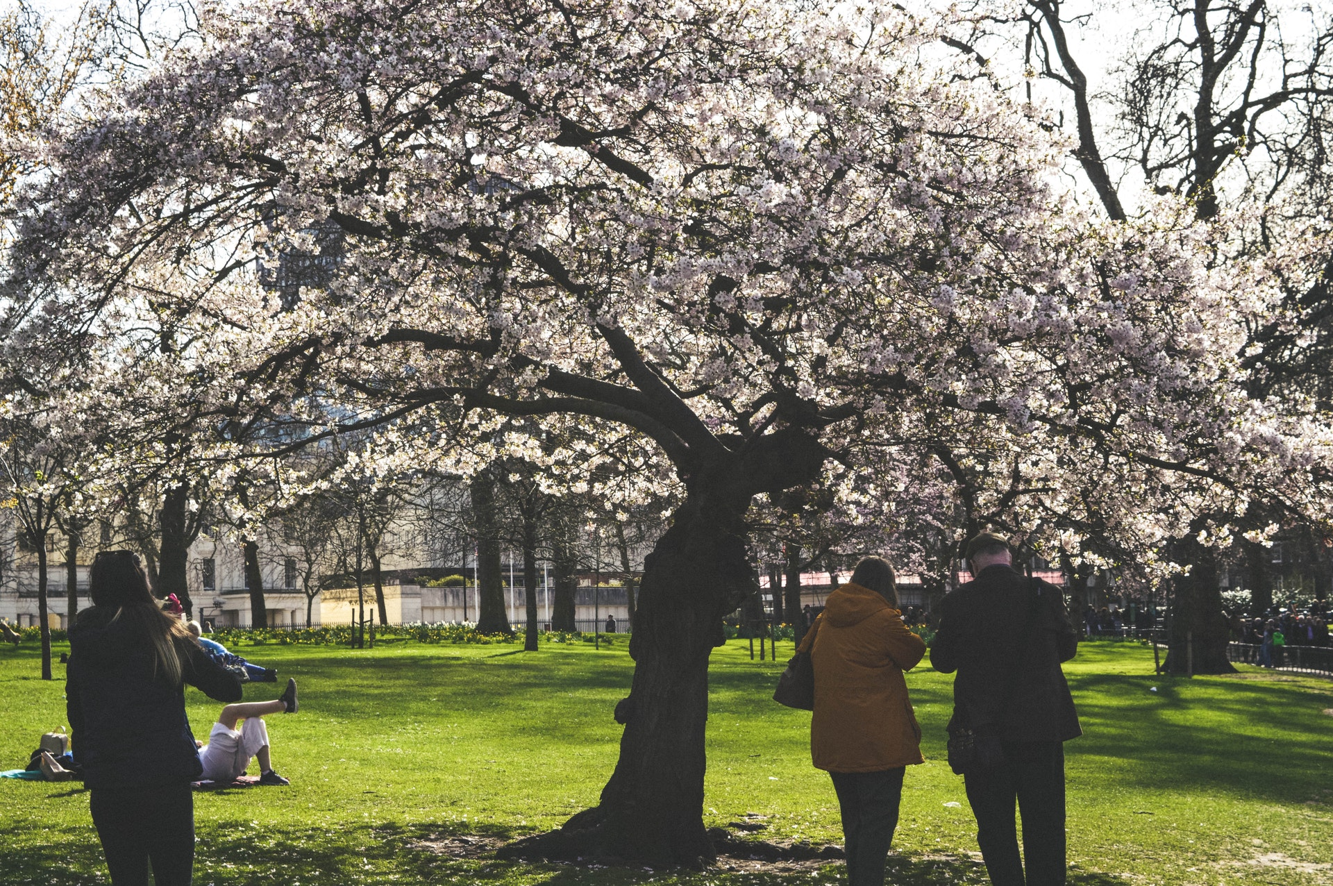 5 Fun Spring Activities