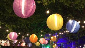 A swath of ball lights in various colors hanging in trees